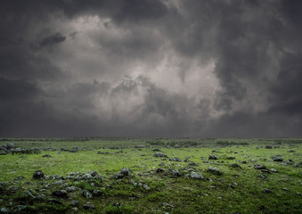 Green field during a thunderstorm.