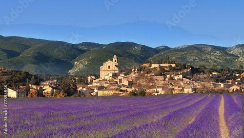 Fotobehang Lavendel village du luberon