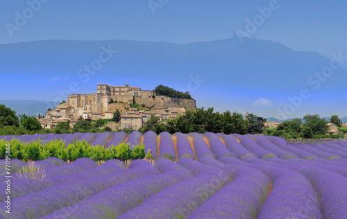 village de provence - 77895866
