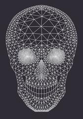 White mesh skull, vector
