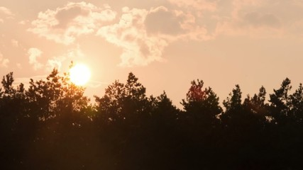 Sunrise with cloud-drift and trees, time lapse