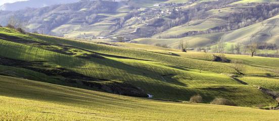 Oltrepo Pavese winter panorama. Color image