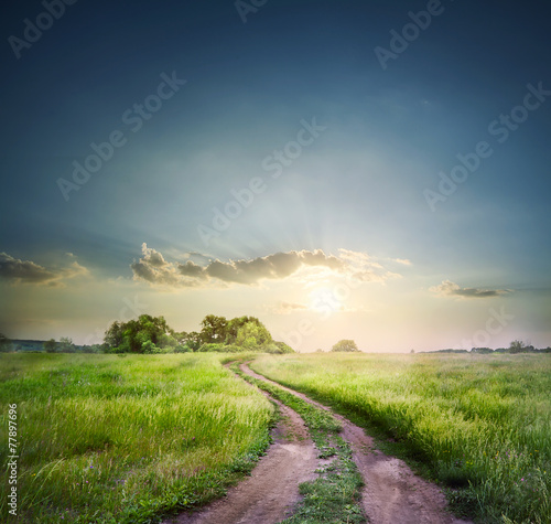 Rural road in field with green grass Photo by alexlukin