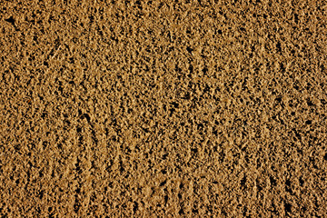 Freshly raked soil ready for the sowing of seed