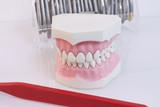 Stomatologia_2 - 77900890