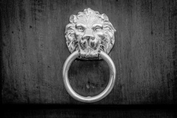 Typical ancient door knocker with lion face, b&w conversion
