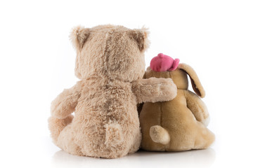 Dog and teddy bear with their arms around each other.