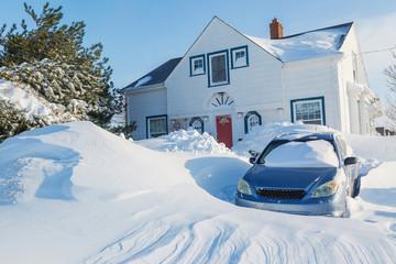 Snowstorm in Suburbia