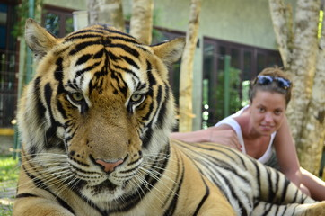 Woman with a tiger in captivity