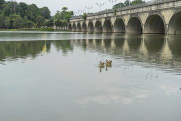 Lake with concrete bridge