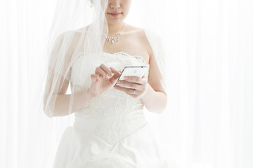 Bride that use electronic terminal
