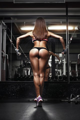 back view of sexy young brunette woman workout in the gym. Fitne