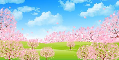 桜 空 背景