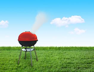 barbecue picnic on backyard