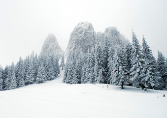 Winter Mountain Tour. Vintage photo