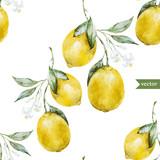 Fototapety Lemon pattern3