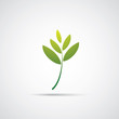 Leaves - Eco Icon or Logo Design