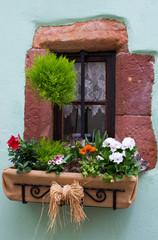 Fenêtre fleuri