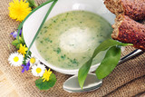 Suppe aus Frühlingskräutern oder Wildkräutern, copy space