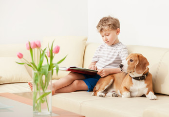 Reading boy with beagle on sofa in cozy home