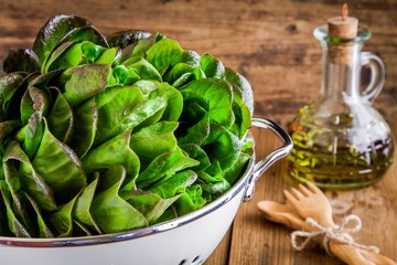 lunchtime: fresh green salad