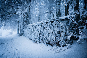 Pile of wood covered with fresh snow and rime