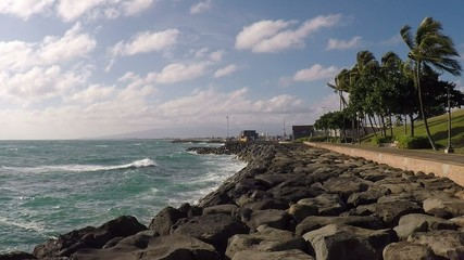 Windy tropical waterfront park Kakaako Honolulu Hawaii