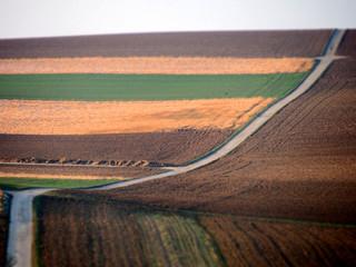 Agrarlandschaft im Winter