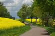 canvas print picture - Der Weg