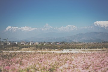 instagram filter beautiful Himalaya