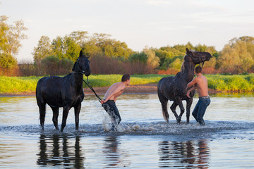 Two young men wash a horse