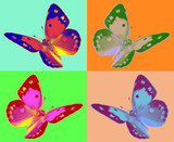 pop art Colias butterfly