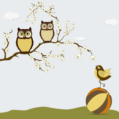 Cute owls on branch with bird on the ball
