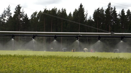 Forestry automatic irrigation equipment slow
