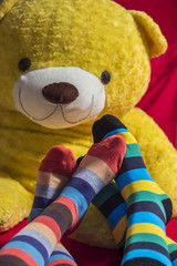 Colored socks on Valentine couple feet over a teddy bear
