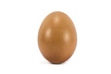 The Egg White Background