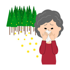 An elderly woman blowing nose, allergy caused by cedar pollen