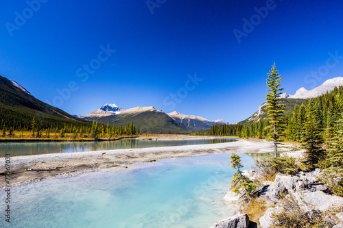 canvas print picture Sunwapta River, Jasper National Park in Alberta, Canada