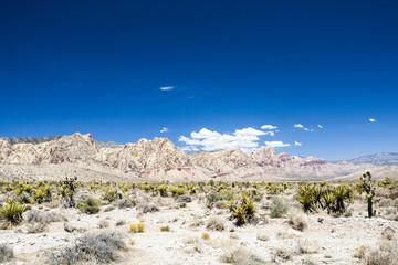 Red Rock Canyon Panorama, Nevada, USA