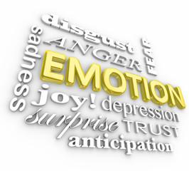 Emotion Wide Range Sadness Joy Surprise Anger Depression