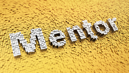Pixelated Mentor