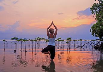 Woman practicing yoga on the beach near  mangroves