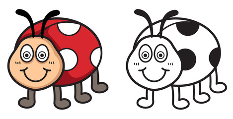 colorful and black and white ladybug for coloring book
