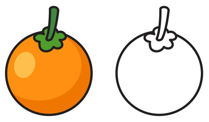 colorful and black and white oranges for coloring book