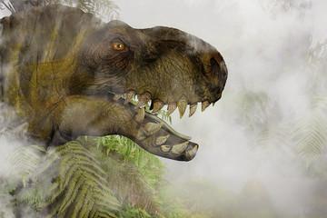 Tyrannosaurus Rex in the misty Jungle