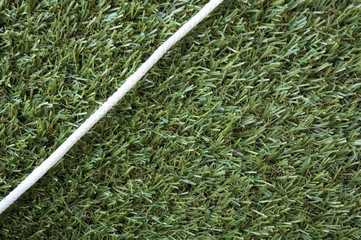 white rope in the corner of grass