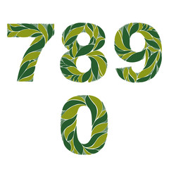 Ornamental figures, numbers decorated with summer green herbal p