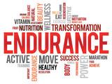 ENDURANCE word cloud, fitness, sport, health concept poster