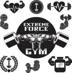 Vector set gym
