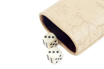 dice with leather case